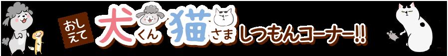 おしえて犬くん猫さましつもんコーナー!!