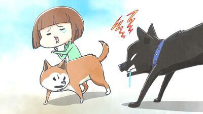 先々代の犬